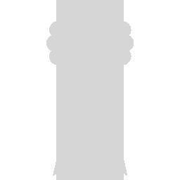 gerenommeerd grijs